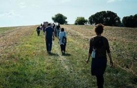 wandelmeditatie3 Nieuwsbrieven van Leven in Aandacht