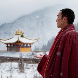 28 - 30 sept: Boeddhistisch filmfestival in Amsterdam over 'Radical Presence'