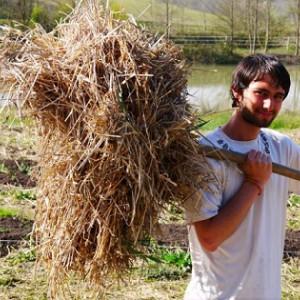 Een jaar lang stage lopen op de Happy Farms van Plum Village