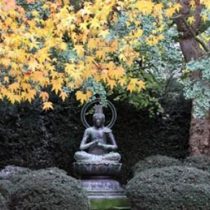 6 september: Lezing 'Boeddhisme en natuur' in Artis