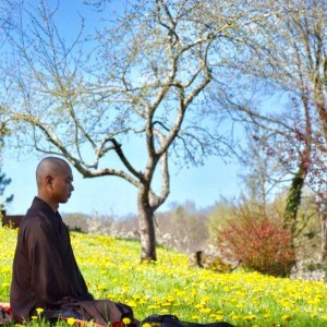 6-9 mei: Lente retraite online met kloosterlingen Plum Village