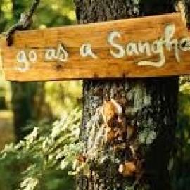 Wel en wee in de sangha