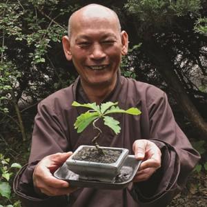 In memoriam: broeder Phap Luong van het EIAB